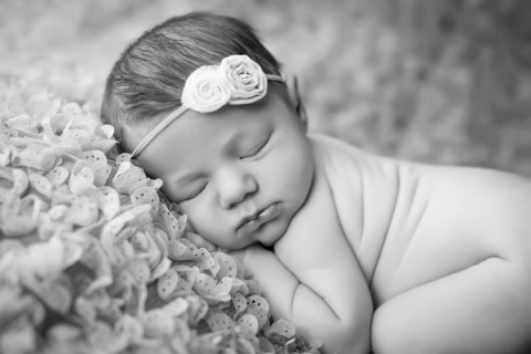 charleston_SC_newborn_photographer_reagan_image_12